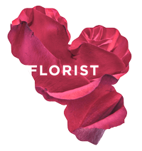 Camberwell Florist | Melbourne | Weddings & Special Events