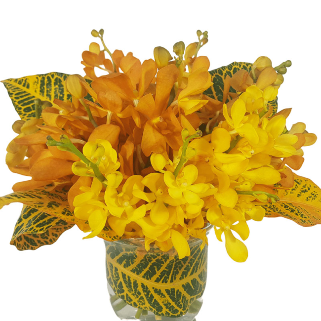 Vase of yellow orchids and tropical foliage