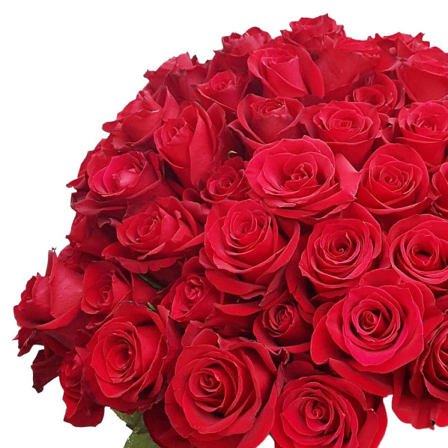 bunch of 12 red roses
